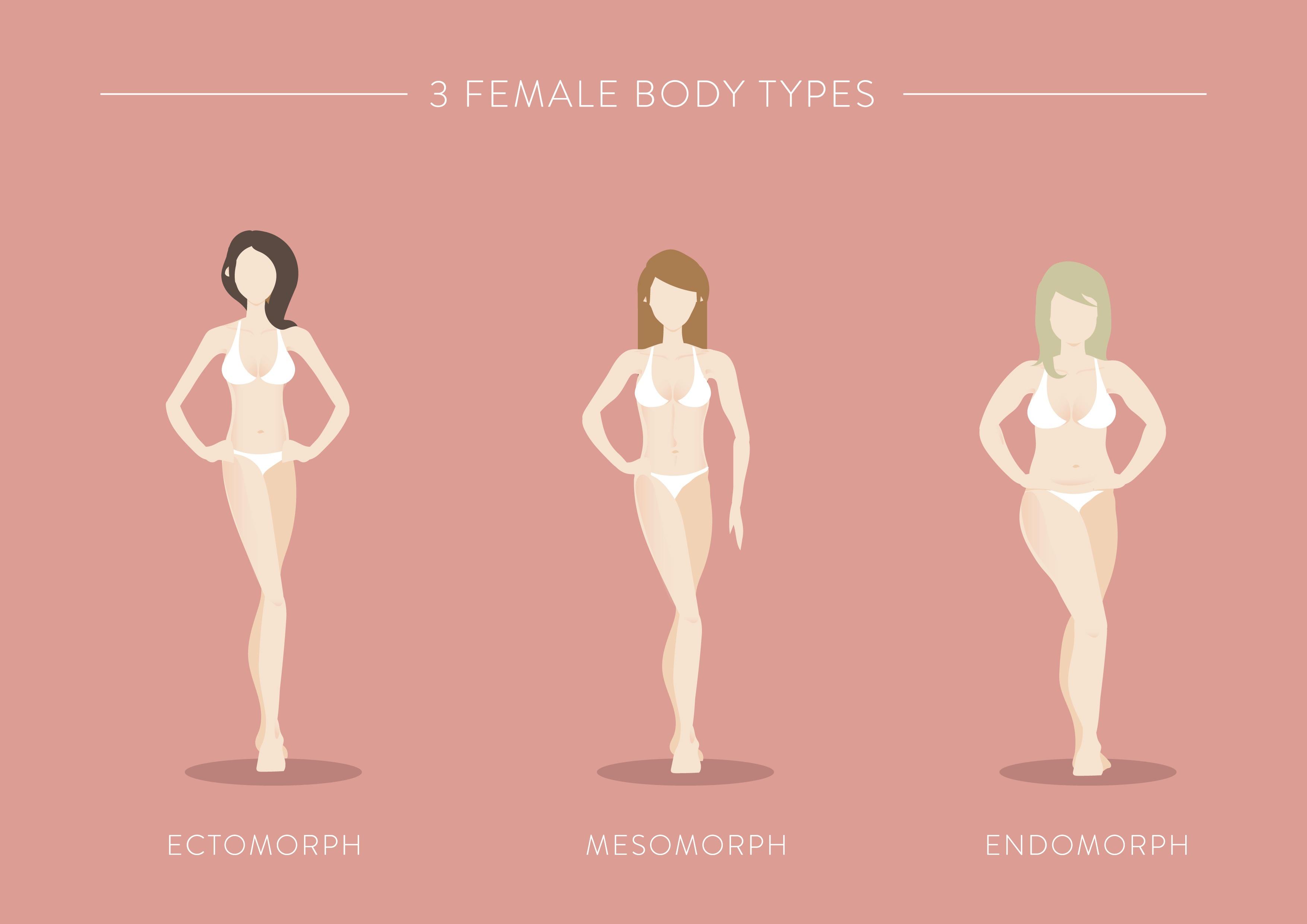 female body types ectomorph mesomorph endomorph
